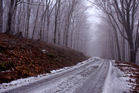 """Icy Drive"" Tucker County, WV"
